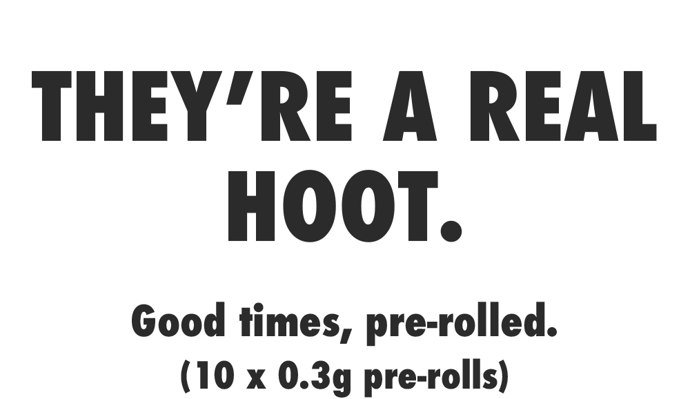 they-are-a-real-hoot