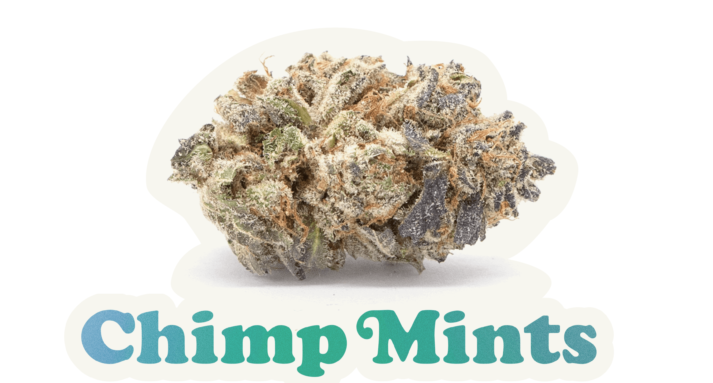 wildlife-cannabis-chimp-mints
